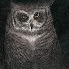 オザケンフクロウの声が聞こえる.jpg