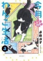 今月のわんこ生活3.jpg