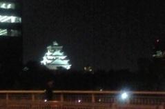大阪城夜景.JPG