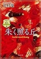 沢村凛 ソナンと空人4朱く照る丘.jpg