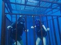 海底47m3.jpg