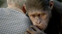 猿の惑星創世記3.jpg